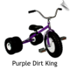 Purple Dirt King Dually Tricycle