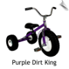 Purple Dirt King Tricycle